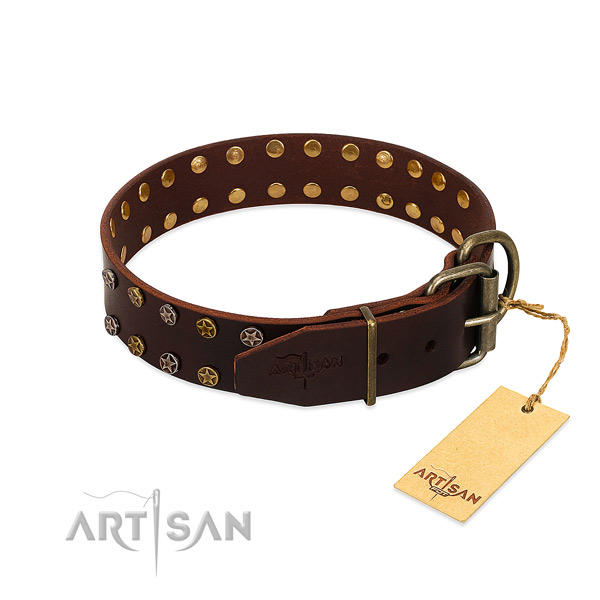 Daily use leather dog collar with unusual embellishments