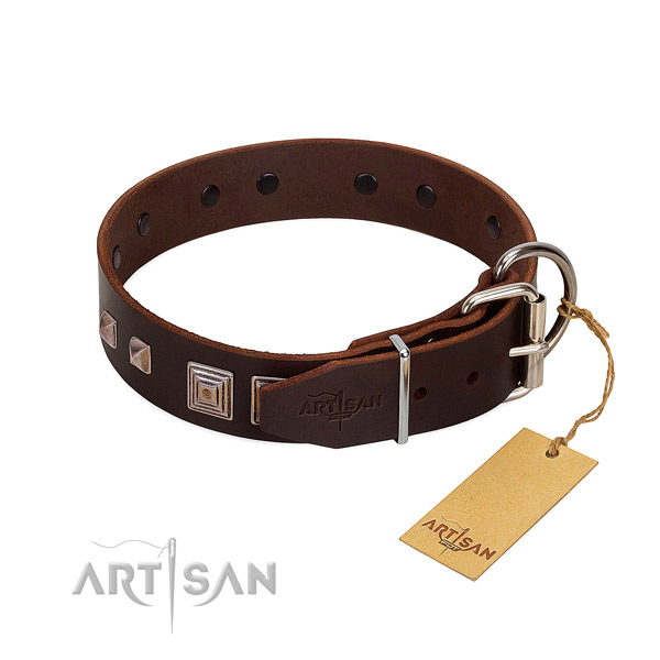 Walking genuine leather dog collar with extraordinary studs