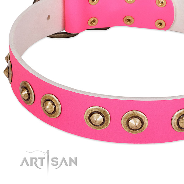Reliable studs on natural genuine leather dog collar for your canine