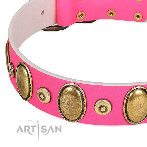 Quality full grain natural leather collar with rust-proof studs for your dog