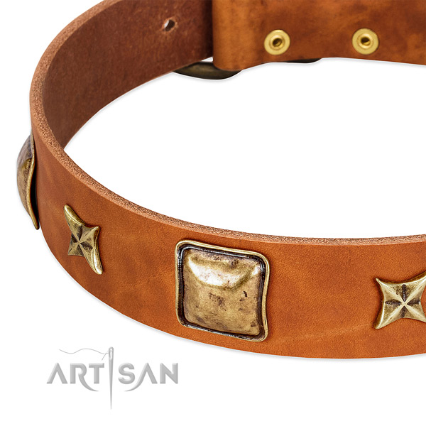 Durable hardware on full grain genuine leather dog collar for your canine