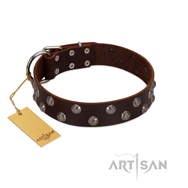 Top rate full grain genuine leather dog collar with adornments