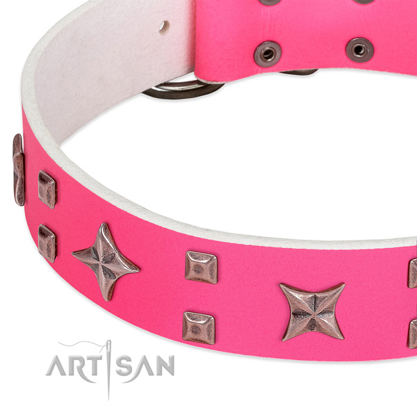 Durable hardware on full grain genuine leather collar for fancy walking your canine