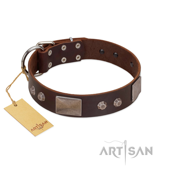 Amazing full grain leather dog collar with strong hardware