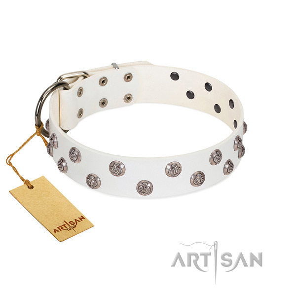 Best quality genuine leather dog collar with durable fittings