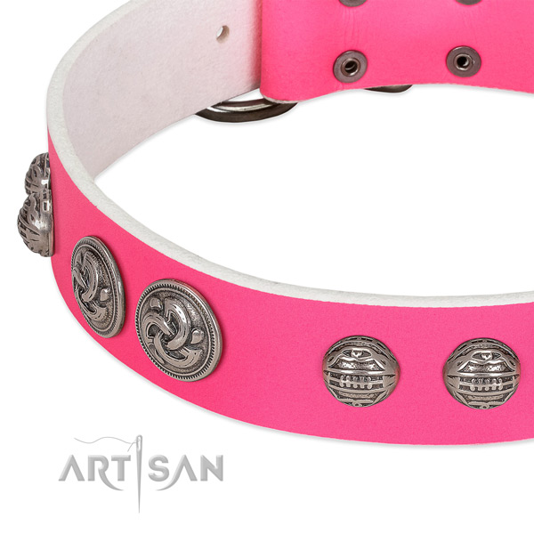 Durable buckle on genuine leather collar for basic training your doggie