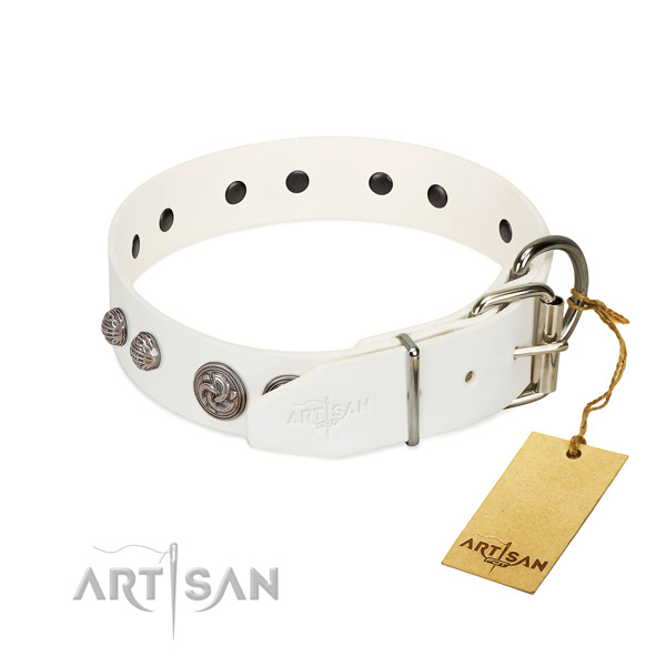 Corrosion resistant studs on leather dog collar for your four-legged friend