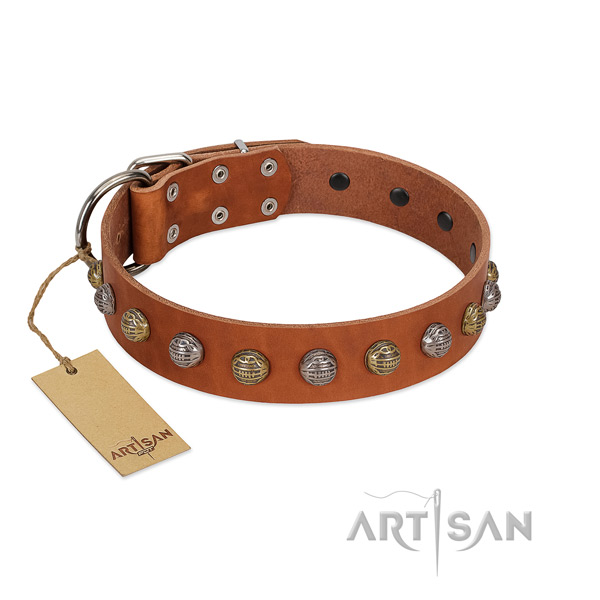 Rust-proof traditional buckle on full grain genuine leather dog collar for everyday walking your pet