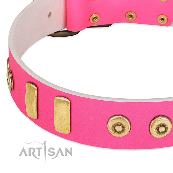 Soft leather dog collar with inimitable studs