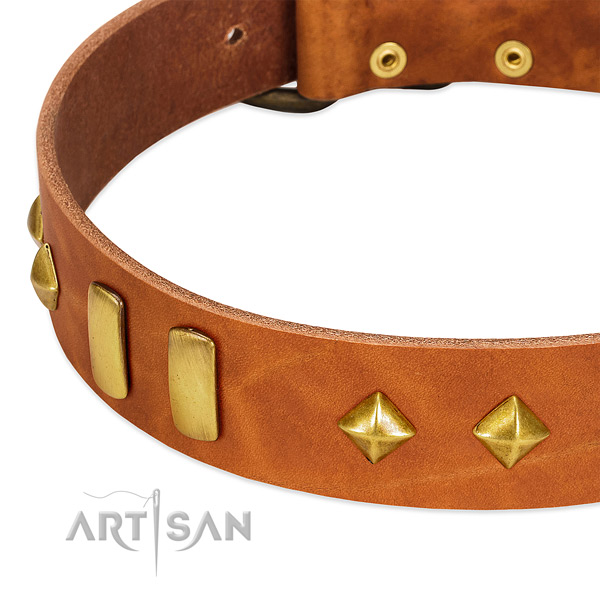 Easy wearing full grain natural leather dog collar with top notch studs