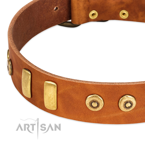 Quality full grain genuine leather collar with incredible adornments for your dog