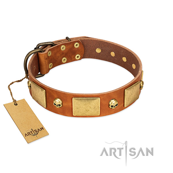 Soft leather dog collar with rust resistant adornments