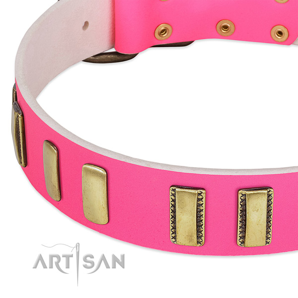 Top rate full grain natural leather dog collar with decorations for handy use