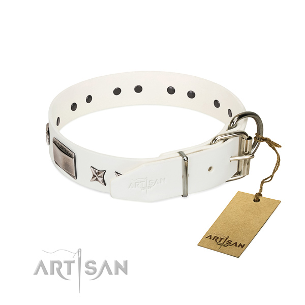 Handcrafted collar of genuine leather for your attractive four-legged friend