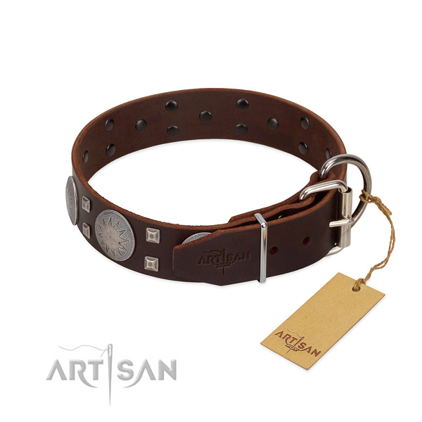 Exceptional full grain leather dog collar for everyday walking your four-legged friend