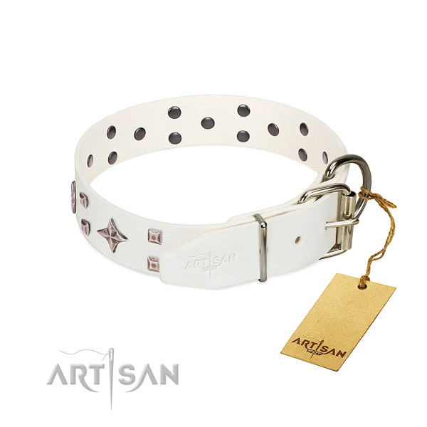 Stunning genuine leather collar for your pet stylish walking