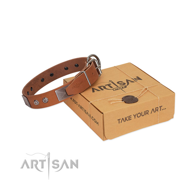Perfect fit dog collar of full grain leather with decorations
