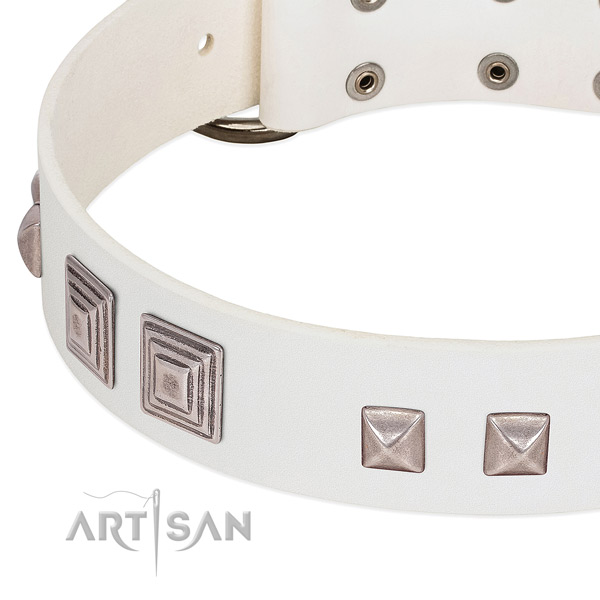 Leather dog collar with rust-proof buckle