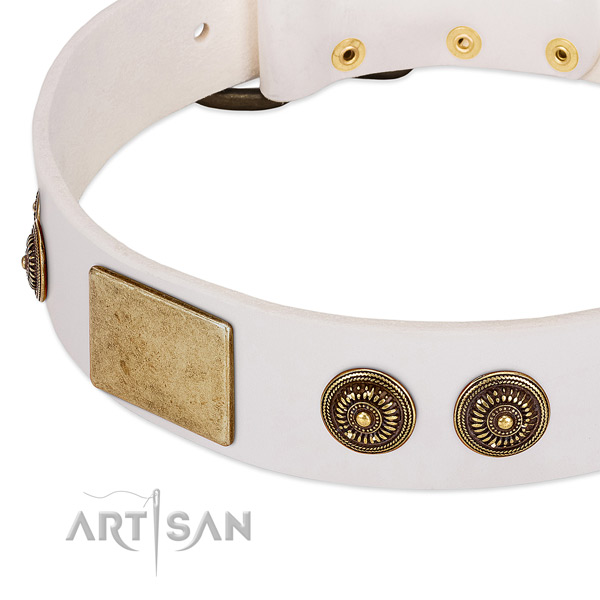Unique dog collar made for your handsome dog