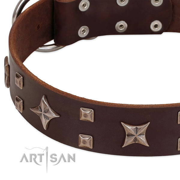 Rust-proof traditional buckle on genuine leather collar for basic training your four-legged friend