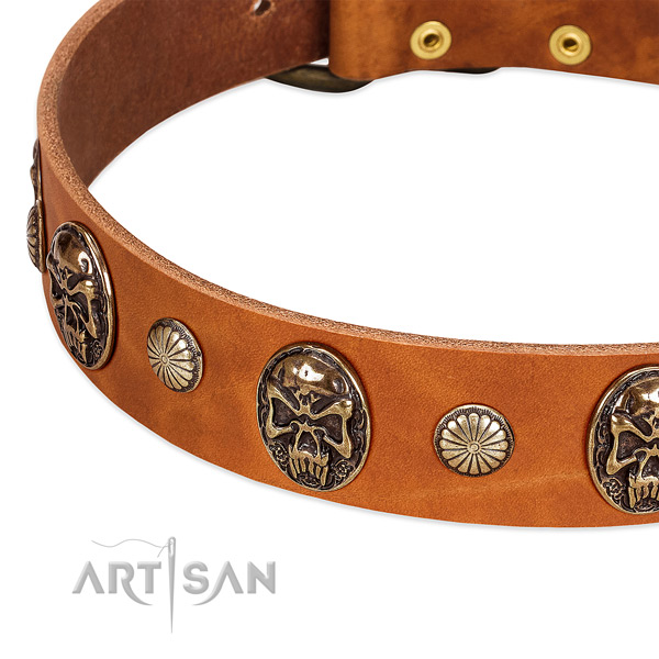 Corrosion resistant buckle on full grain leather dog collar for your pet