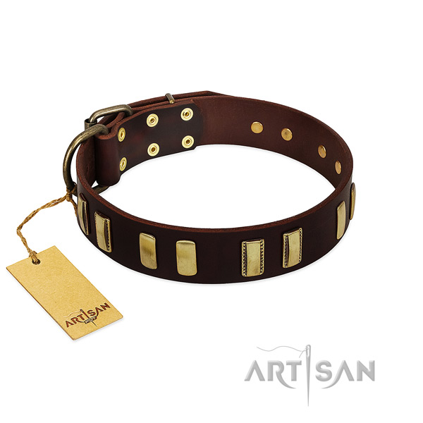 Leather dog collar with durable hardware for fancy walking