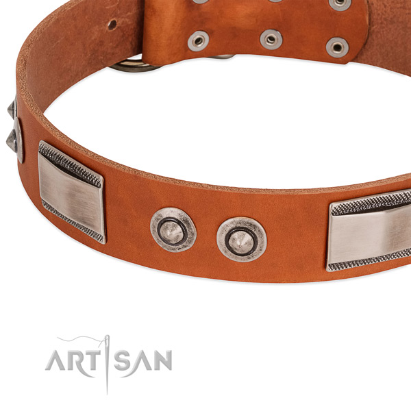 Unique full grain natural leather collar with embellishments for your canine