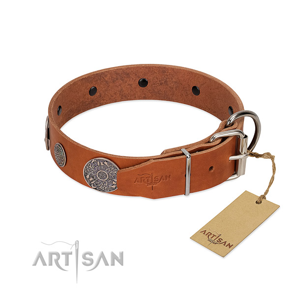 Perfect fit full grain leather collar for your lovely doggie