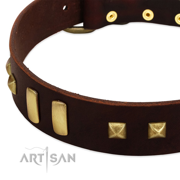 Top rate leather dog collar with studs for daily use