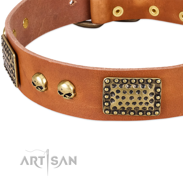 Rust resistant studs on genuine leather dog collar for your four-legged friend