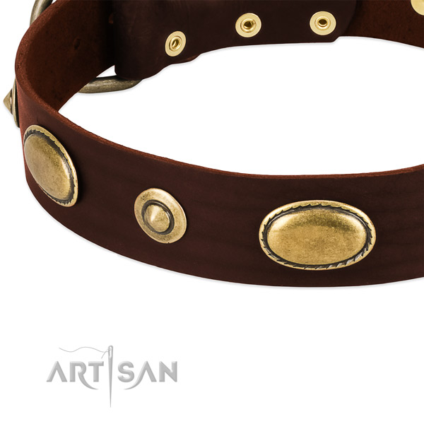 Corrosion resistant D-ring on natural leather dog collar for your dog