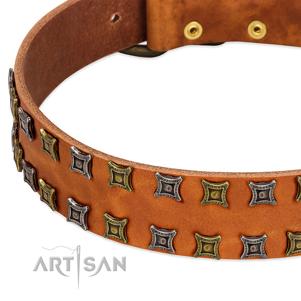 Top rate full grain leather dog collar for your stylish four-legged friend