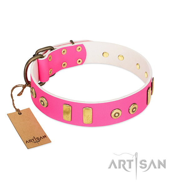 Genuine leather dog collar with top notch embellishments for comfortable wearing
