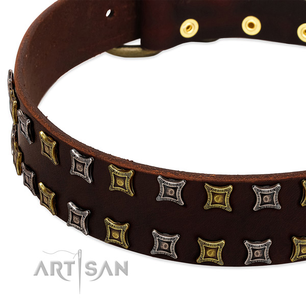 Strong leather dog collar for your beautiful pet