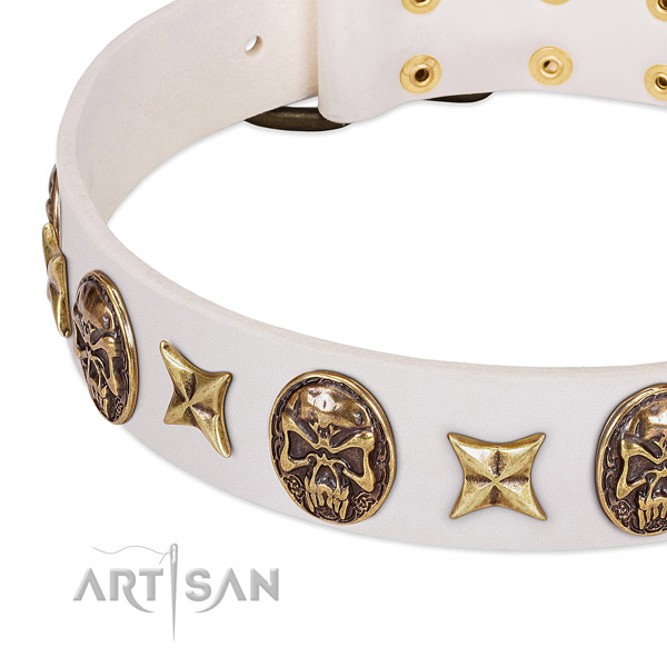 Incredible dog collar handcrafted for your impressive four-legged friend
