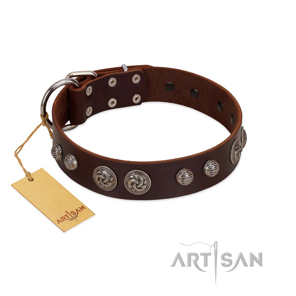 Inimitable full grain natural leather dog collar for basic training