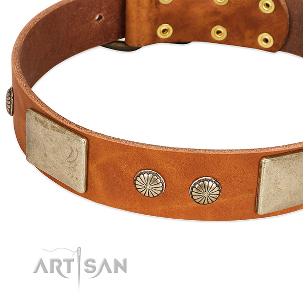 Reliable D-ring on natural genuine leather dog collar for your doggie