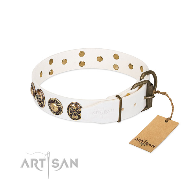 Durable embellishments on comfy wearing dog collar