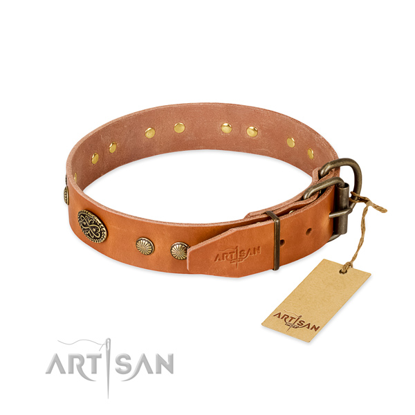 Reliable studs on Genuine leather dog collar for your doggie