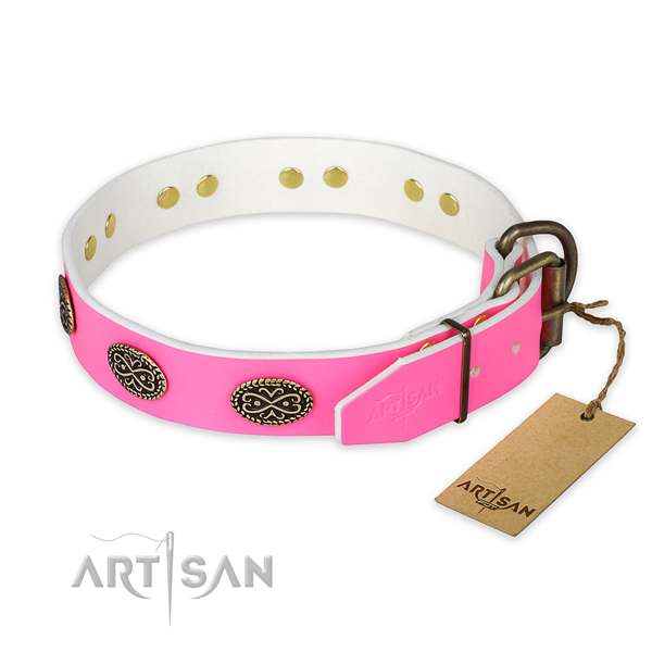 Stylish walking full grain natural leather collar with embellishments for your dog