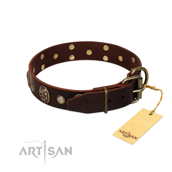 Strong adornments on stylish walking dog collar