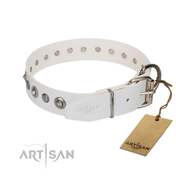 Top notch full grain natural leather dog collar with top notch embellishments