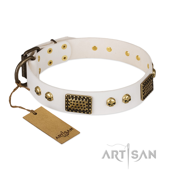 Strong fittings on walking dog collar