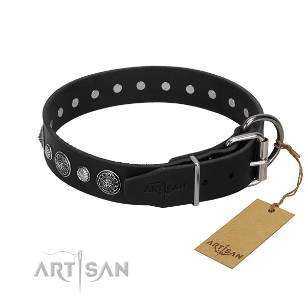Finest quality full grain leather dog collar with stylish design embellishments