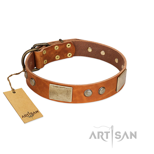 Easy adjustable full grain natural leather dog collar for everyday walking your canine
