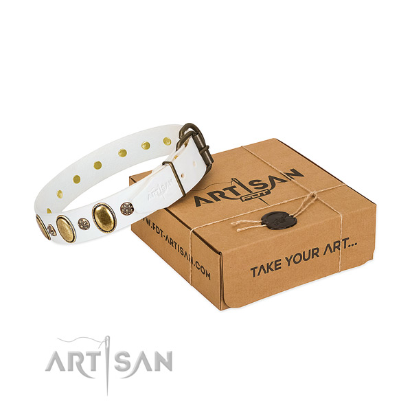 Stylish walking gentle to touch full grain genuine leather dog collar with adornments
