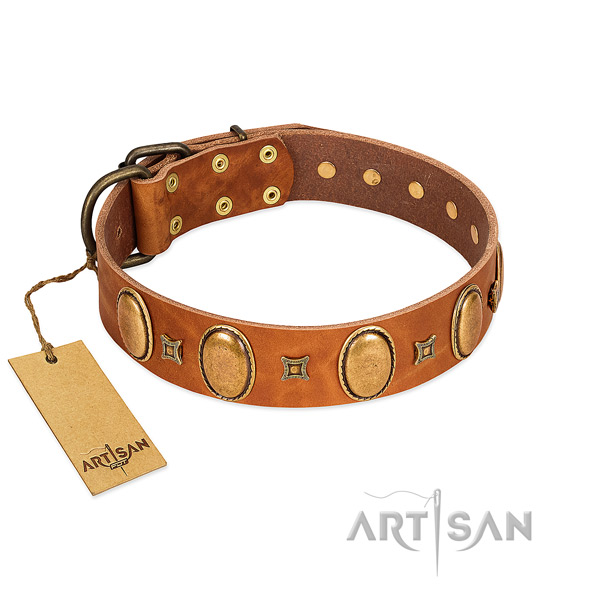 Genuine leather dog collar with stylish design embellishments for handy use