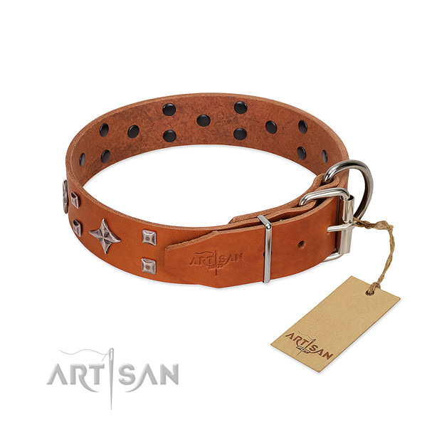 Trendy genuine leather collar for your dog daily walking