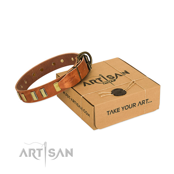 Leather dog collar with corrosion proof fittings for comfortable wearing