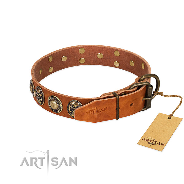 Corrosion proof decorations on everyday walking dog collar